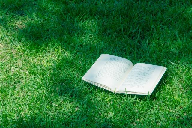 草原と読書