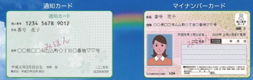 通知カードとマイナンバーカード